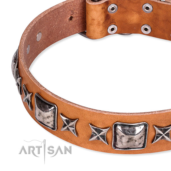 Easy wearing decorated dog collar of high quality full grain leather