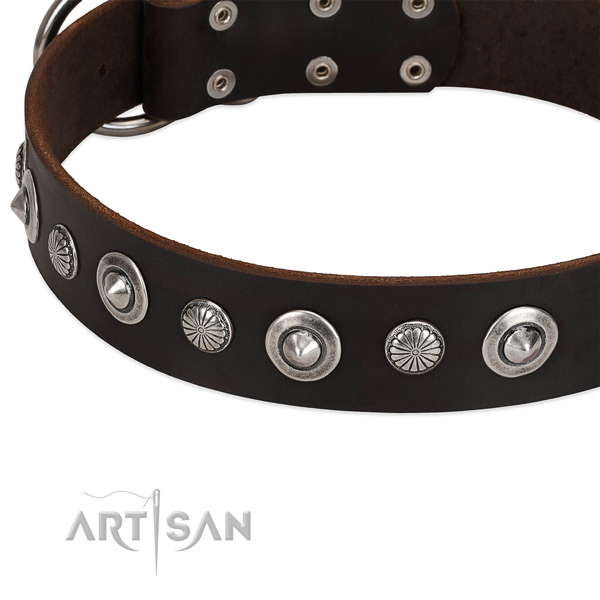 Stunning embellished dog collar of high quality full grain leather
