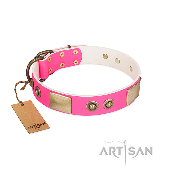 Reliable traditional buckle on genuine leather dog collar for your pet