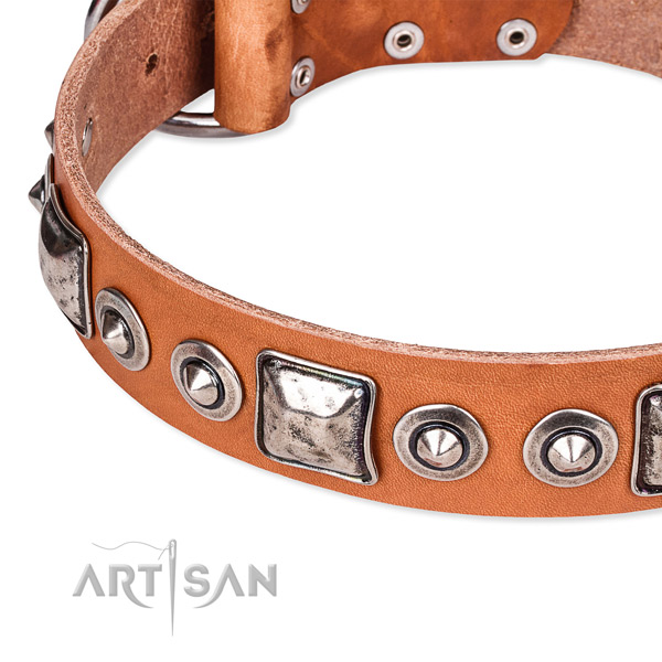 Reliable natural genuine leather dog collar crafted for your lovely pet