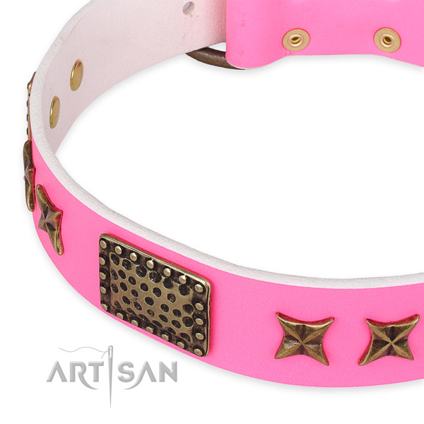 Genuine leather collar with corrosion resistant fittings for your lovely dog