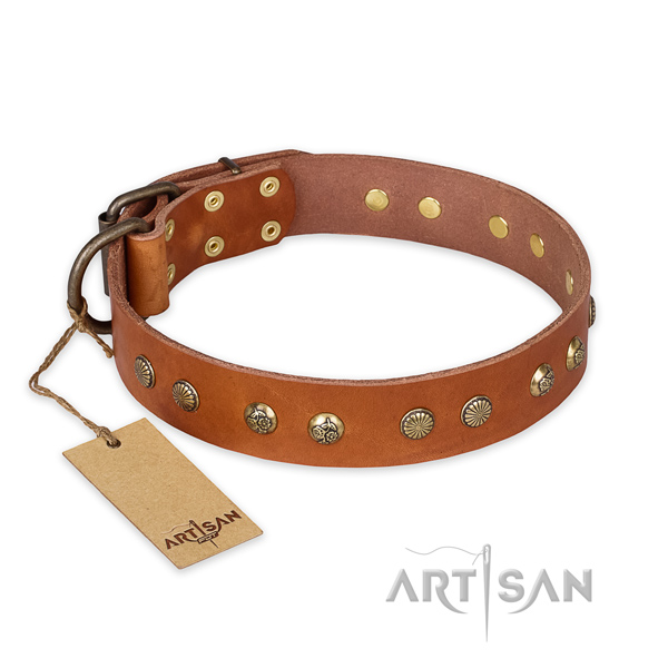 Remarkable leather dog collar with corrosion proof fittings