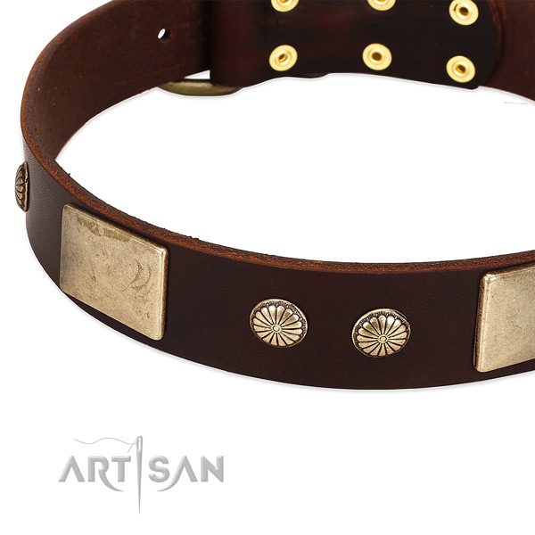 Strong D-ring on full grain genuine leather dog collar for your canine