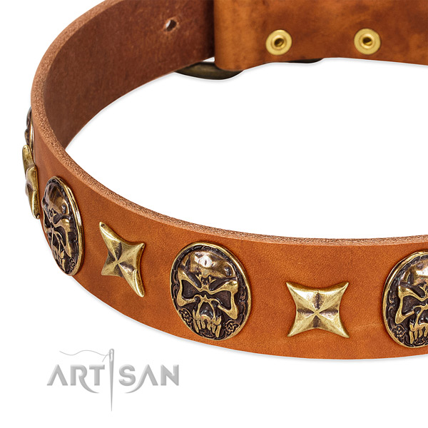 Reliable adornments on full grain genuine leather dog collar for your dog