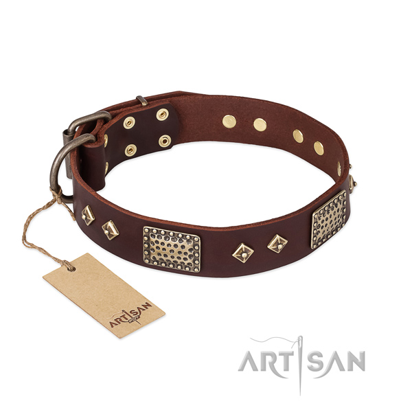 Awesome genuine leather dog collar for daily walking