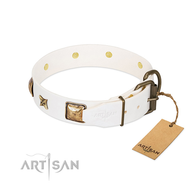 Full grain natural leather dog collar with durable hardware and studs