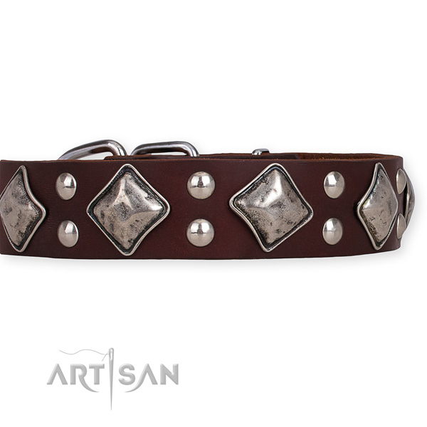Natural leather dog collar with amazing rust-proof decorations