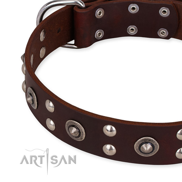 Genuine leather collar with corrosion proof buckle for your impressive pet