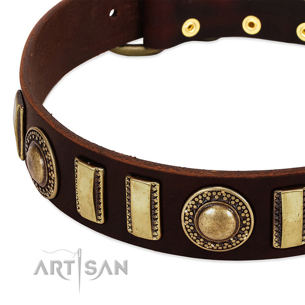 Reliable leather dog collar with durable traditional buckle