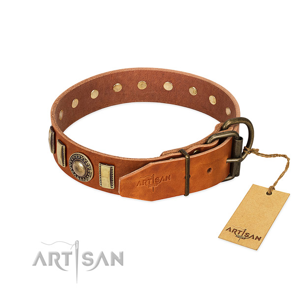 Convenient full grain leather dog collar with corrosion proof hardware