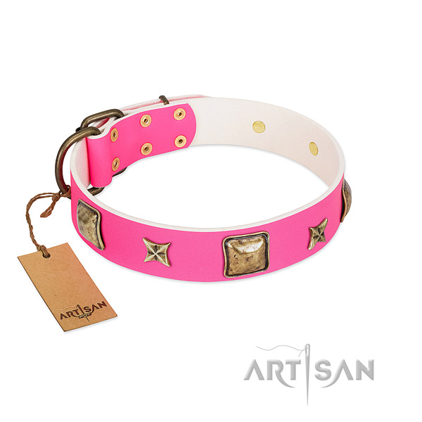 Leather dog collar of quality material with remarkable adornments
