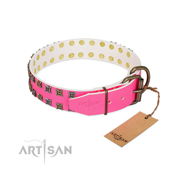 Full grain natural leather collar with amazing studs for your four-legged friend