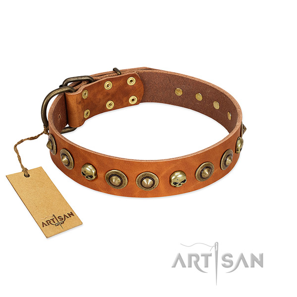 Leather collar with exceptional embellishments for your pet
