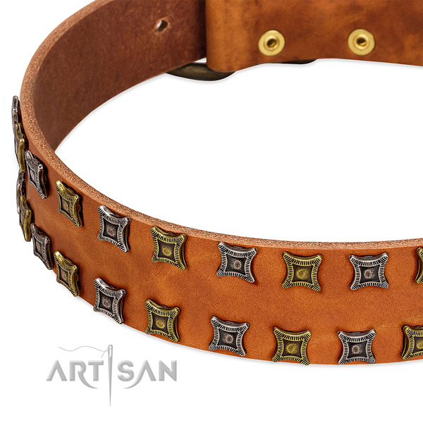 Best quality full grain leather dog collar for your stylish pet
