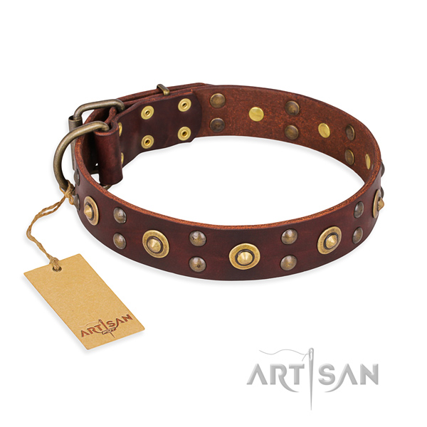 Impressive full grain natural leather dog collar with corrosion resistant traditional buckle