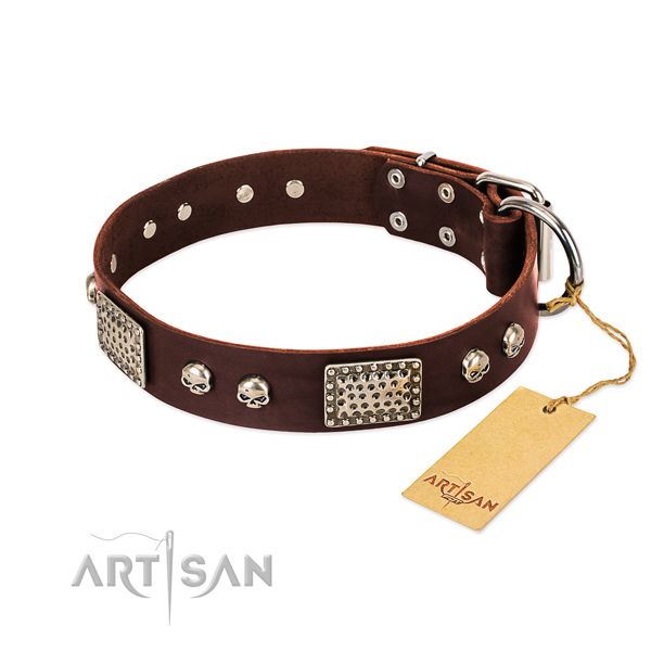 Easy to adjust leather dog collar for stylish walking your pet