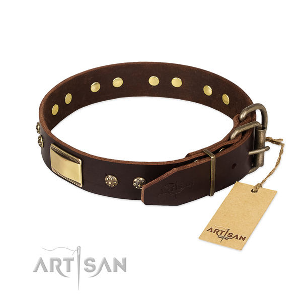 Studded genuine leather collar for your dog
