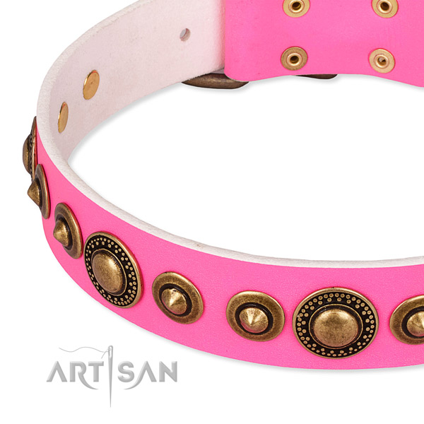 High quality leather dog collar created for your attractive doggie