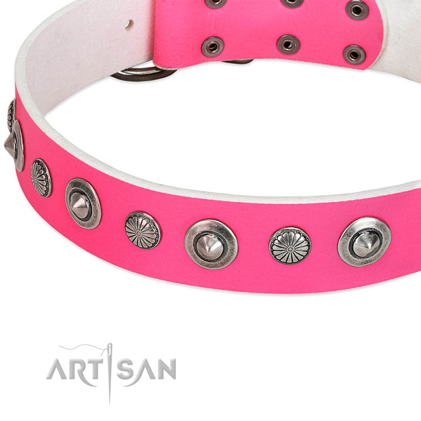 Natural leather collar with rust resistant buckle for your beautiful four-legged friend