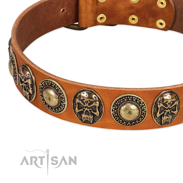 Rust-proof embellishments on natural leather dog collar for your pet