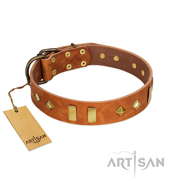 Everyday use reliable natural leather dog collar with studs