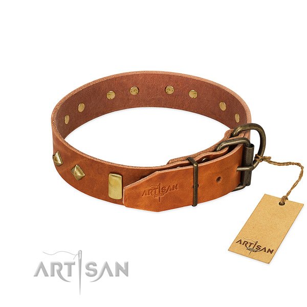 Stylish walking natural leather dog collar with designer adornments