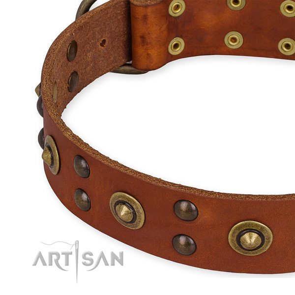 Full grain genuine leather collar with corrosion proof fittings for your beautiful doggie