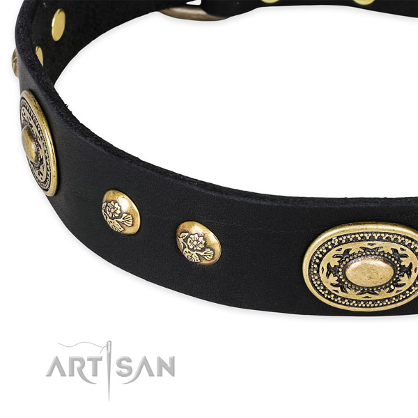 Perfect fit genuine leather collar for your beautiful canine