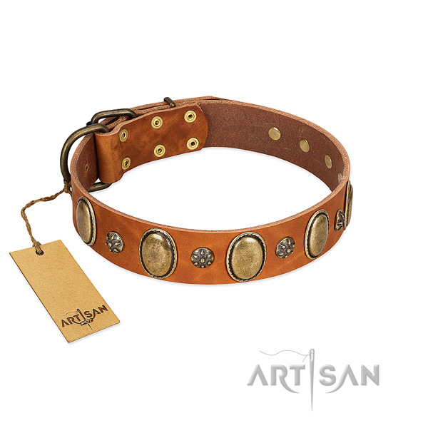 Stylish walking reliable genuine leather dog collar with studs