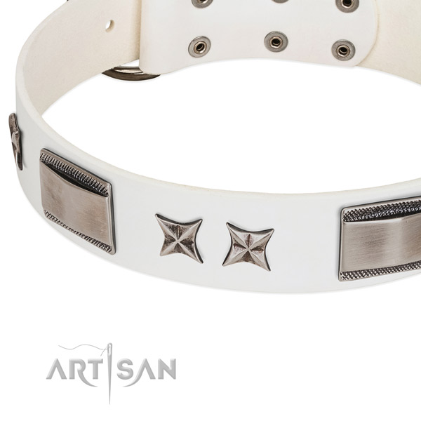 Best quality genuine leather dog collar with reliable D-ring