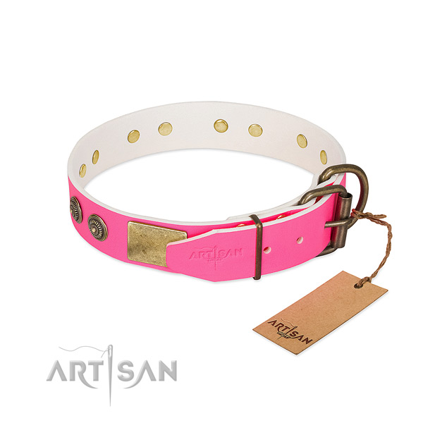 Rust resistant traditional buckle on natural genuine leather collar for daily walking your four-legged friend
