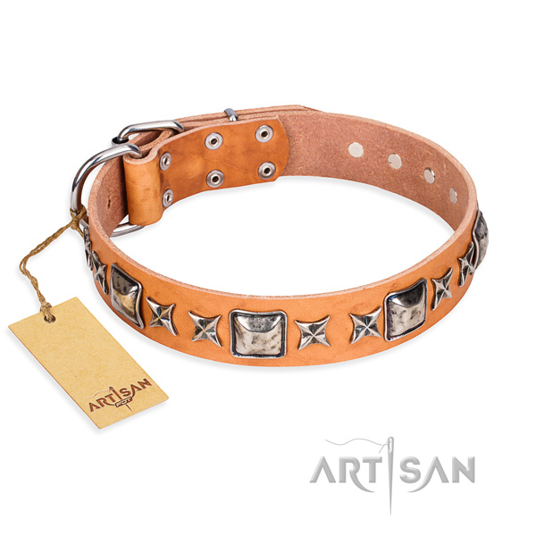 Daily walking dog collar of top quality full grain genuine leather with adornments