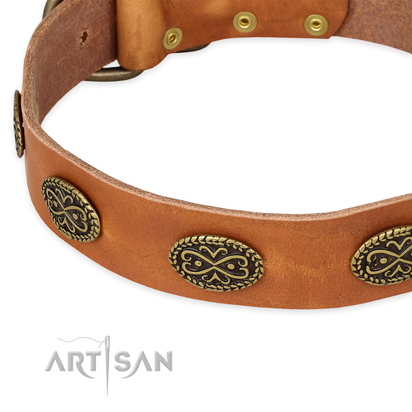 Studded natural genuine leather collar for your lovely doggie