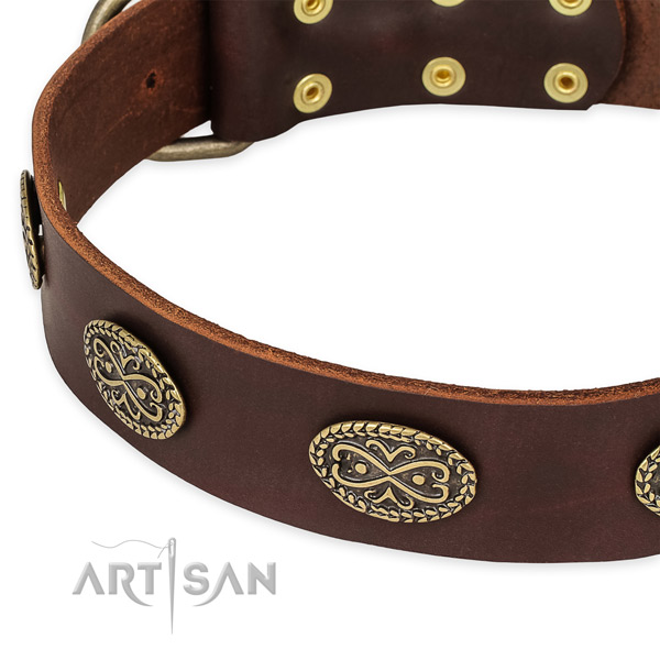 Top notch full grain leather collar for your attractive canine