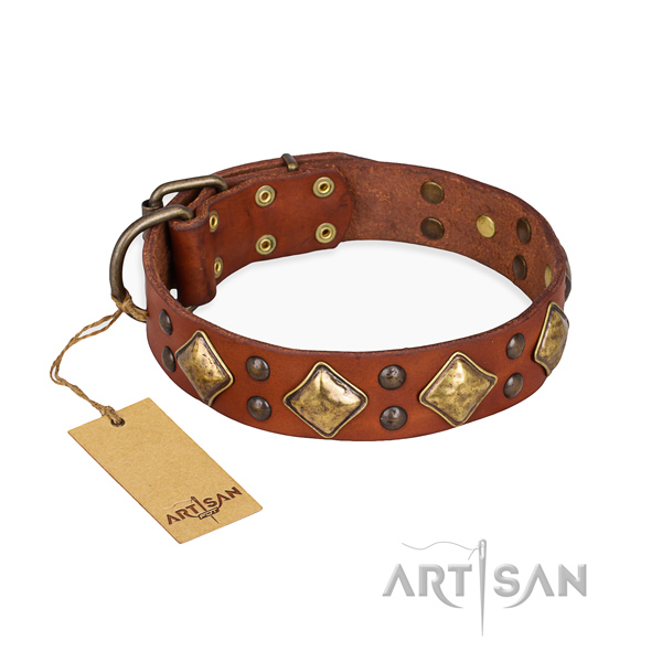 Daily walking stylish design dog collar with corrosion resistant buckle