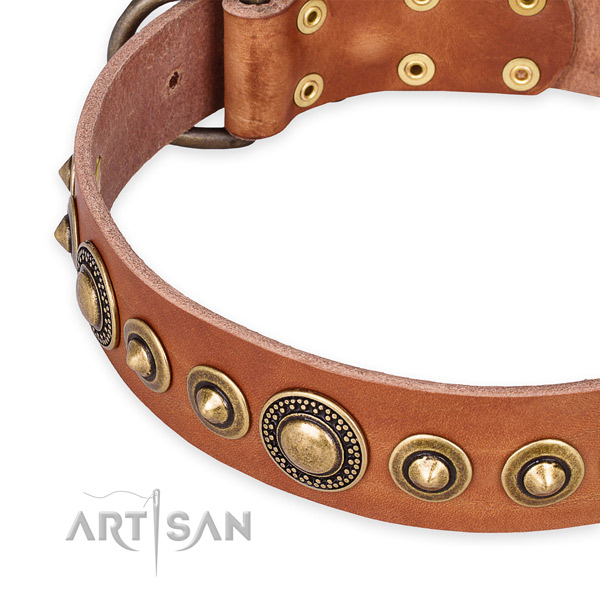 Strong full grain natural leather dog collar created for your attractive four-legged friend