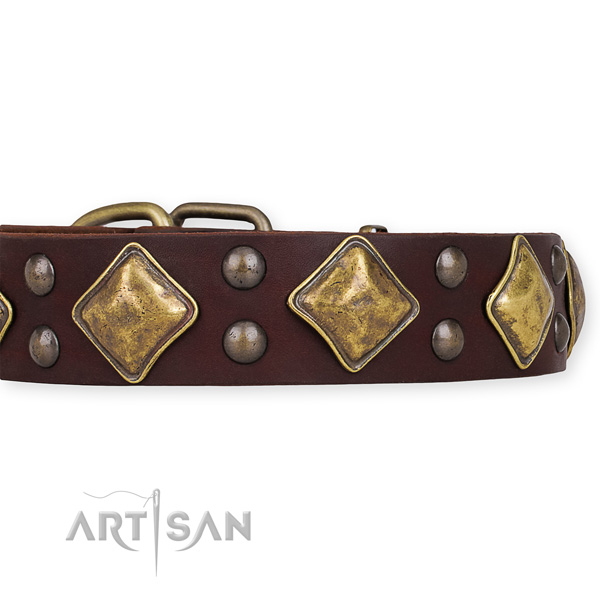 Full grain natural leather dog collar with awesome corrosion resistant decorations