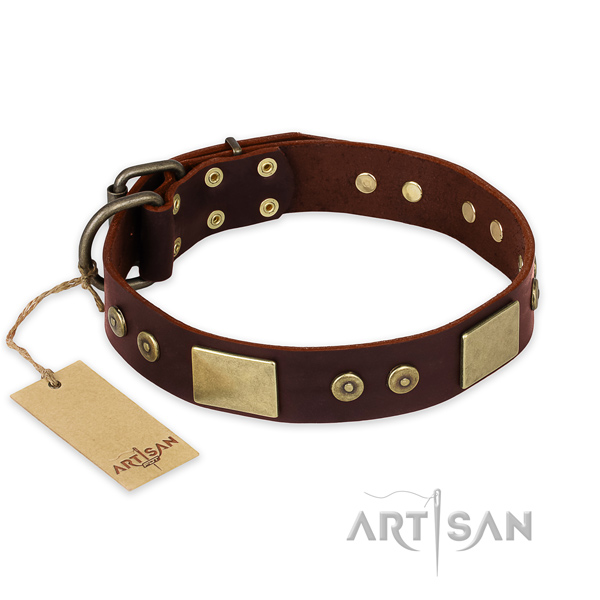 Unusual genuine leather dog collar for walking