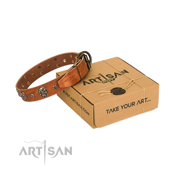 Reliable studs on full grain leather dog collar for your dog