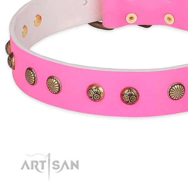 Full grain leather collar with strong buckle for your beautiful four-legged friend