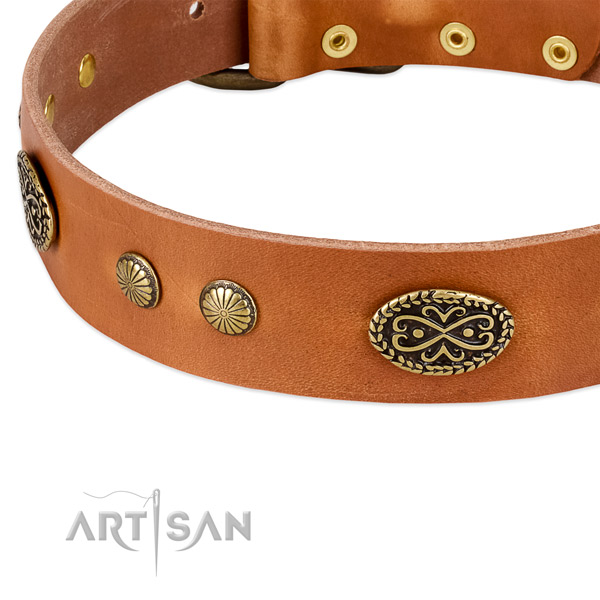 Rust resistant embellishments on full grain genuine leather dog collar for your doggie
