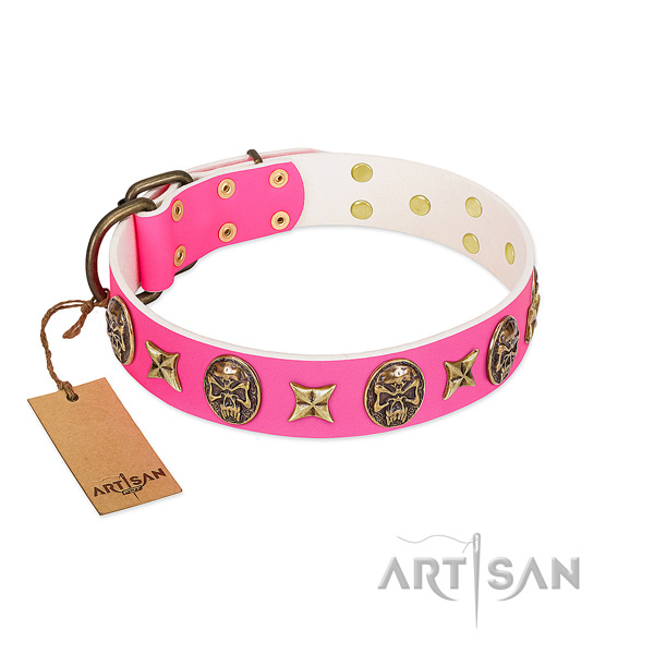 Leather dog collar with reliable studs