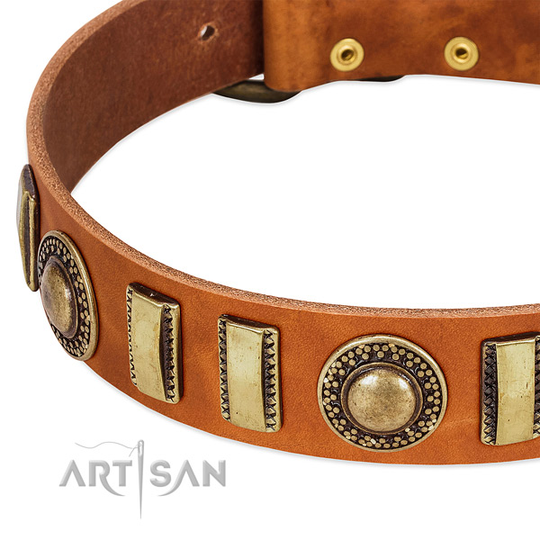 Soft to touch full grain leather dog collar with strong buckle