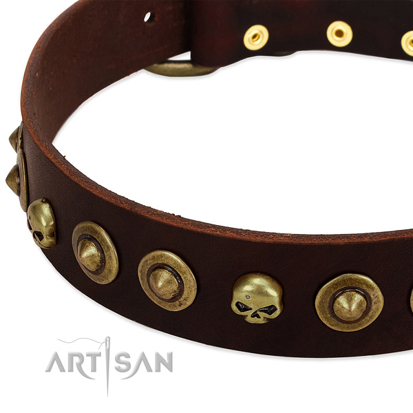 Fashionable embellishments on full grain genuine leather collar for your four-legged friend