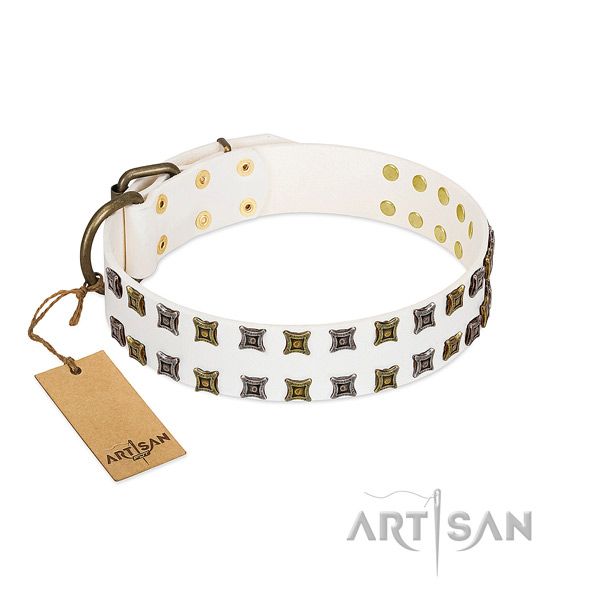 Reliable full grain natural leather dog collar with studs for your doggie