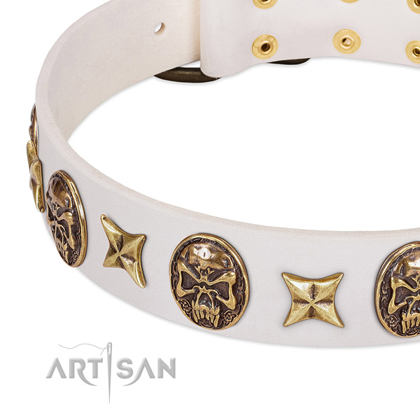 Full grain leather dog collar with reliable fittings