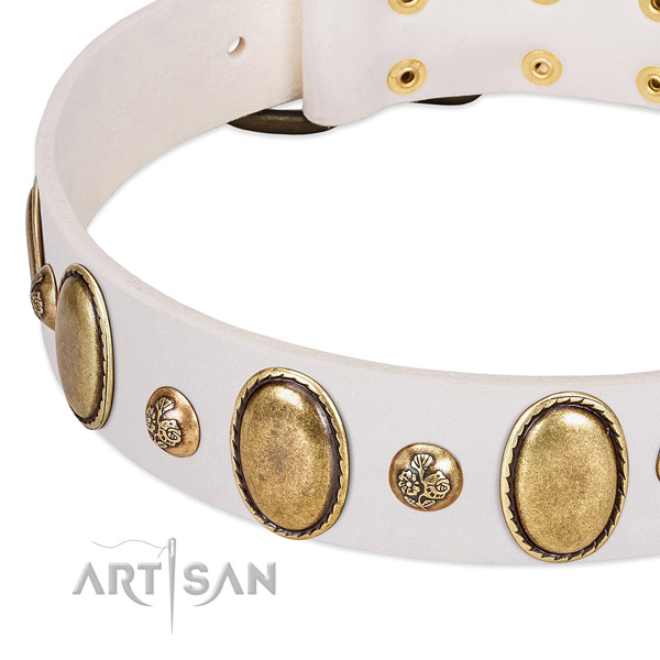 Full grain leather dog collar with top notch adornments