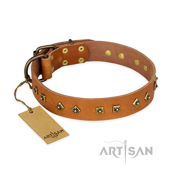 Easy to adjust full grain genuine leather dog collar with strong traditional buckle