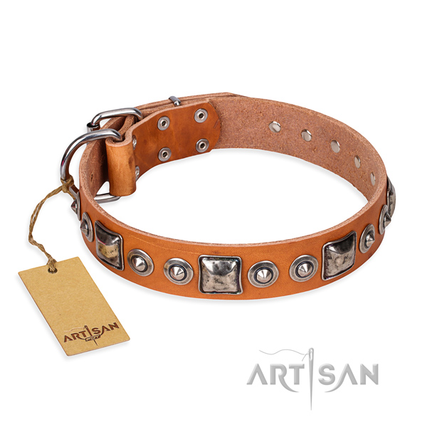 Leather dog collar made of top notch material with durable traditional buckle