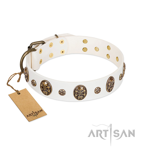 Studded full grain natural leather collar for your canine